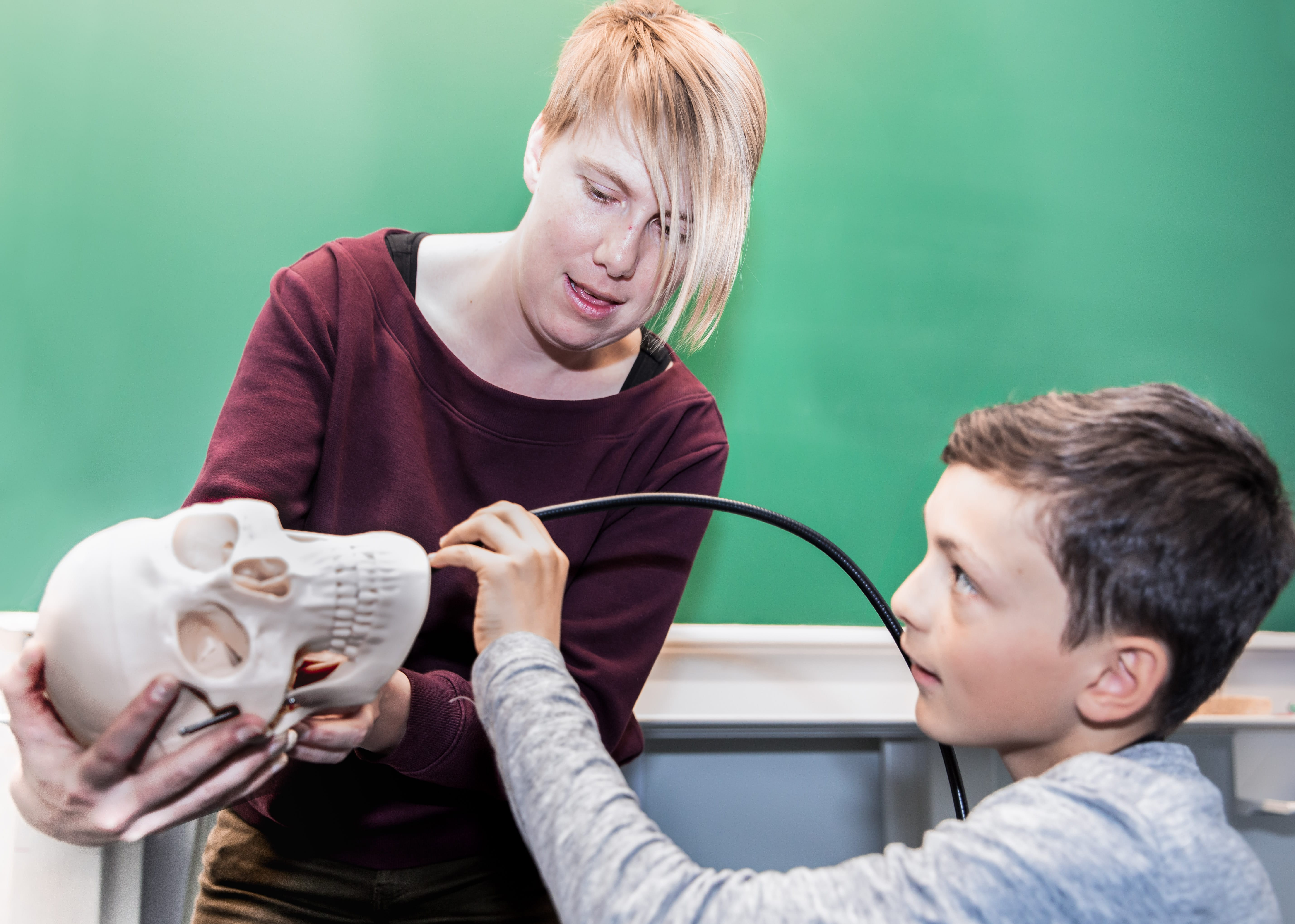 workshop kinderuniversiteit - licht schedel